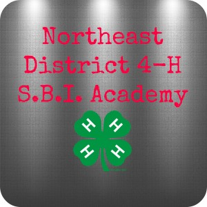 Cover photo for 4-H S.B.I. Academy