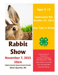 Cover photo for 3rd Annual Rabbit Show