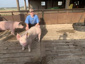 Cover photo for 29th Annual Hyde County 4-H Virtual Livestock Show and Sale