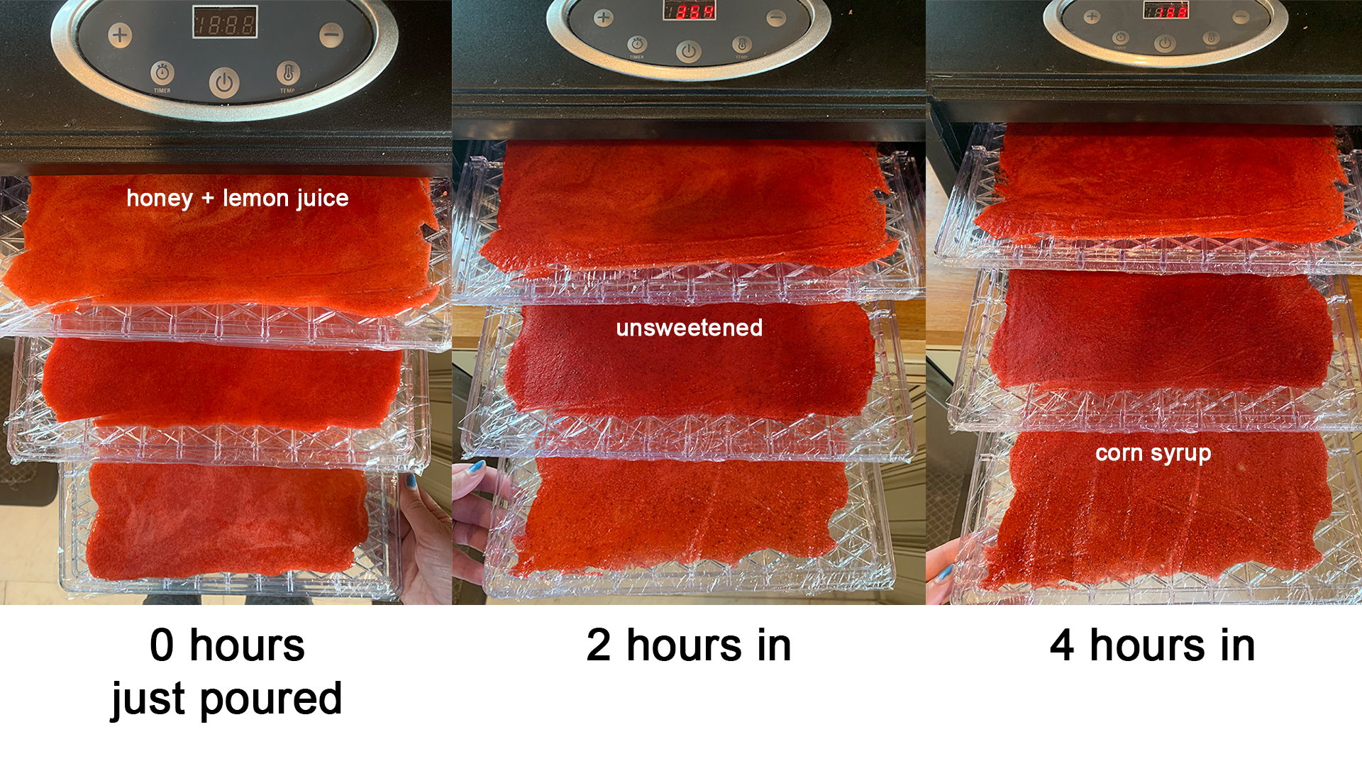 Dehydrating time lapse for strawberry fruit leather
