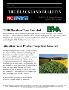 Cover photo for Blackland Bulletin July 2020