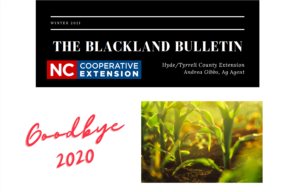 Cover photo for Winter 2021 Blackland Bulletin