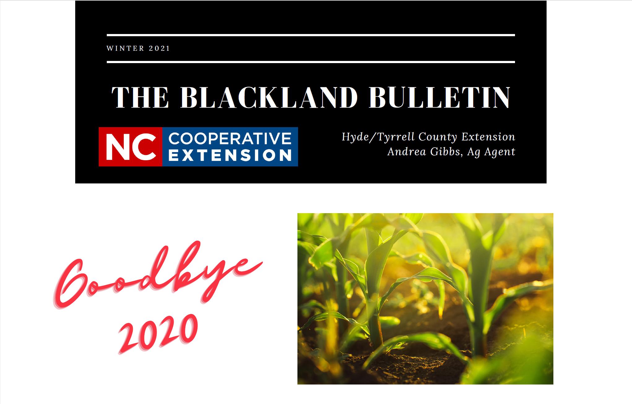 Blackland Bulletin header image